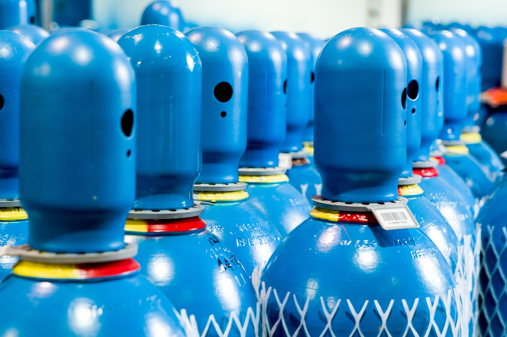 Close up showing blue caps and shoulders of rows of specialty gas cylinders at Alpha New Jersey. Newly labelled and netted cylinders, ready for delivery.
